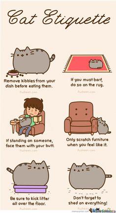 Pusheen´s Cat Etiquette