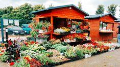 Bazarek Natury to wyjątkowa przestrzeń, w której realizowana jest idea sprawiedliwego handlu, budując bezpośrednie relacje między lokalnymi producentami zdrowej żywności i konsumentami. Bazarek Natury – Miejsce Bazarek Natury odbywa się w Centrum Produktów Lokalnych w Krępie Słupskiej. Centrum Produktów lokalnych to przestrzeń należąca do Centrum Kultury Gminy Słupsk. Adres: ul. Lipowa 3, 76-200 Krępa Słupska. […] Źródło Local News, Cabin, House Styles, Home, Decor, Decoration, Cabins, Ad Home, Cottage
