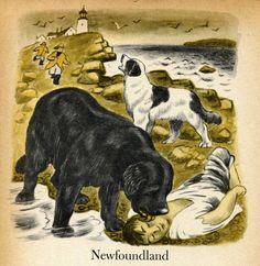 Newfoundland Dog Illustration by Tibor Gergely from a Vintage Childrens Book