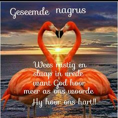 Good Night Blessings, Goeie Nag, Goeie More, Afrikaans Quotes, Good Night Quotes, My Sister, Beautiful Landscapes, Getting To Know, Messages