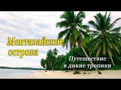 Beach, Water, Plants, Outdoor, Youtube, Gripe Water, Outdoors, The Beach, Beaches