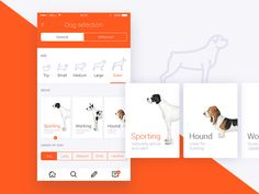 Pets by lluck #Design Popular #Dribbble #shots