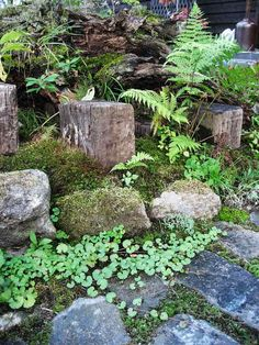 トカチの庭