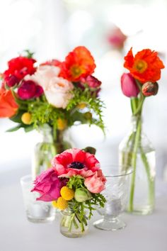 poppies and craspedia! love the varying heights and bright colors!