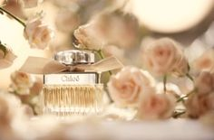 (WW) Chloe is such a lovely perfume. It is feminine and light yet a powerfully bold statement. Perfume Store, Perfume Bottles, Beauty Make Up, Beauty And The Beast, Blue Perfume, Lovely Perfume, Parfum Rose, Peach Blush, Floral Fashion