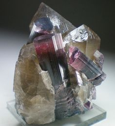 Smoky Quartz and Elbaite / Himalaya Mine