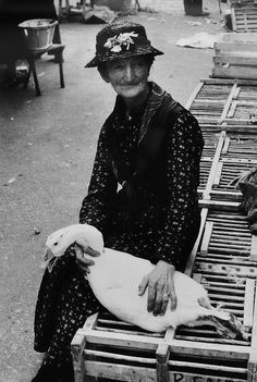 Marnee in her secret Granny role as Mother Goose....or is it Mother and Goose?