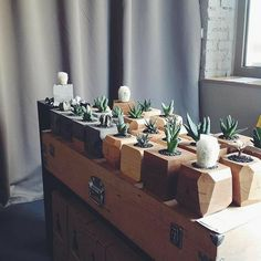 24 Wonderful Wooden Home İdeas - Room Dekor 2021 Wooden Planters, Diy Planters, Wooden Crafts, Diy And Crafts, Wooden Kitchen Signs, Wooden Chopping Boards, Furniture Care, Wooden Flowers, Plant Decor