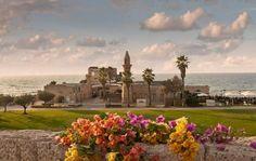 The beauties of Caesarea, Israel