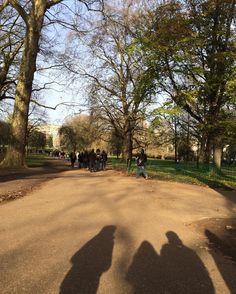 #BuckinghamPalace #buckingham #uk #unitedkingdom #london #ldn #palace #queen #europe #winter #autumn #greatbritain #oxford #university #bicycles #park #gardens #kewgardens #tate by grosso.mg