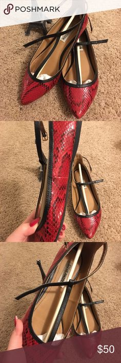 Steve Madden Red Snake Pattern Ankle Strap Flats Chic and Edgy pair of pointy flats with ankle strap. ✨NEW 98%✨ ONLY WORN ONCE. In great shape, no visible signs of wear on the appearance. CLOSET CLEANING MUST GO 📢 Steve Madden Shoes