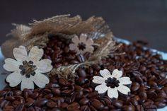 Káva, Zrnková Káva, Dřevo, Květiny