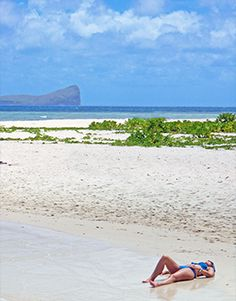flat island Mauritius