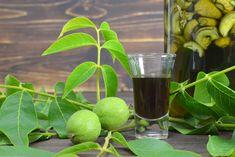 Ha most elkészíted a zölddió-likőrt, ősz végén élvezheted csodás ízét. Pickling Cucumbers, Vodka, Canning, Fruit, Drinks, Drinking, Beverages, Drink, Home Canning