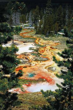 "Another pinner said: ""Artist Paint Pot, Yellowstone National Park, Wyoming - I've been here and lemme tell you something. It is marvelous."""