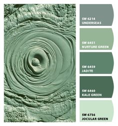 Paint colors from Chip It! by Sherwin-Williams Paint colors from Chip It! by Sherwin-Williams Green Paint Colors, Neutral Paint Colors, Room Colors, Teal Paint, Exterior Paint Colors For House, Interior Paint Colors, Paint Colors For Home, Sherwin Williams Sea Salt, Deco Restaurant