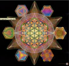 The five Platonic Solids as wells the Star Tetrahedron surrounding a Fractal Sacred Geometry Art Drawing with the Flower of Life and Star Tetrahedron.