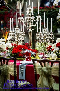Beautiful! Longwood Gardens Christmas Display...I love the beautiful ribbons on the chairs!