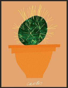 rob hodgson - cactus (still life)