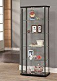 #ad  #1: Coaster Home Furnishings 950170 Curio Cabinet, Black  Coaster Home Furnishings 950170 Curio Cabinet, Black     by Coaster Home Furnishings     (147)   Buy new:      $211.49     11 used & new  from  $199.00   (Visit the  Best Sellers in Display & Curio Cabinets  list for authoritative information on this product's current rank.)  https://www.amazon.com/Coaster-Home-Furnishings-950170-Cabinet/dp/B00FPGP4KA/ref=pd_zg_rss_ts_hg_3734251_1?ie=UTF8&tag=a-zhome-20