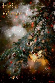 Etsy Christmas, Christmas Clipart, Christmas And New Year, Christmas Time, Holiday, Green Christmas, Winter Christmas, Winter Gif, I Love Winter