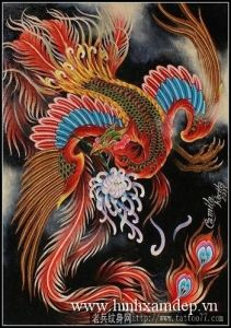 Asian Tattoos, Sweet Tattoos, Tattoos For Guys, Phoenix Back Tattoo, Phoenix Drawing, Phoenix Tattoos, Phoenix Images, Japanese Dragon Tattoos, Oriental Tattoo