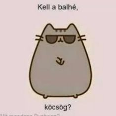Pusheen Cute, Cat Memes, Funny Moments, True Stories, I Am Awesome, Motivational Quotes, Funny Pictures, Jokes, Cats
