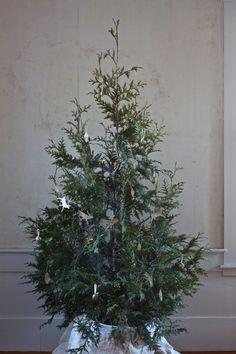 "elorablue: "" DIY Living Christmas Tree: By Gardenista """