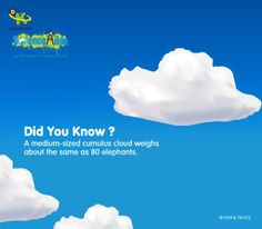Amazing facts About Cloud weight  http://www.scienceadda.com/amazing-facts/about-cloud-weight/
