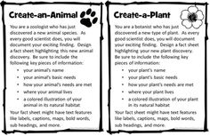 Create a Plant or Animal