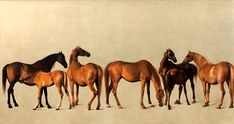 George Stubbs Mares and Foals 1762 - Whistlejacket - Wikipedia, the free encyclopedia