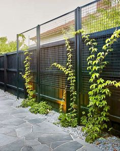 40 Unique Garden Fence Decoration Ideas - All About Backyard Fences, Garden Fencing, Lawn And Garden, Garden Pool, Garden Bed, Unique Gardens, Back Gardens, Beautiful Gardens, Outdoor Pavers