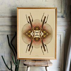 botanische kunst print