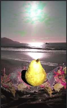 This is a photo collage using a pear photo I took in Berkley, CA one day on the way to work. So I decided that the pear would look good at Stinson Beach with some butterfly friends from Arizona.