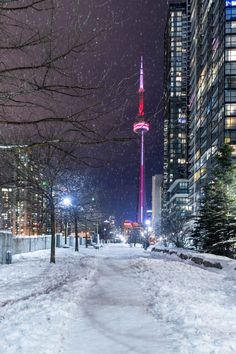 Hi i'm Tina a 21 year old bisexual girl from Toronto ,Canada. I grew up as a tomboy and in. Toronto Snow, Toronto Winter, Visit Toronto, Toronto Ontario Canada, Toronto City, Downtown Toronto, Toronto Skyline, Toronto Photography, Winter Photography