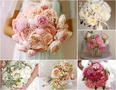 Cabbage Roses - an option that's similar to peonies but may be available in October