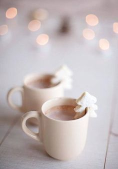 winter christmas hot chocolate with teeny cookies (chocolate bars aesthetic)