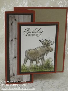 Walk in the Wild Z-fold Card #stampinup #masculine
