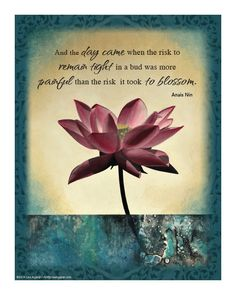 New! Lotus Flower Print with Anais Nin Quote by Lisa Agaran on Etsy $25