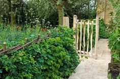 Harpur Garden Images :: 08MH260 Potager and herb garden raised beds borders edged by wicker natural kitchen crop harvest edible organic ecological path gate laid hedge obelisk Design: del Buono Gazerwitz & Spencer Fung Architects for Daylesford Organics RHS Chelsea Flower Show 2008 Marcus Harpur