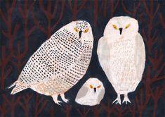 My Owl Barn: Happy Friday! + Colorful Artwork by Machiko Kaede Owl Artwork, Colorful Artwork, Inuit Art, Bird Illustration, Animal Illustrations, Teaching Art, Animal Paintings, Bird Art, Painting Inspiration