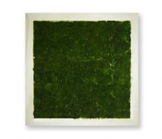 Small Grass Wall - bring the outside in.