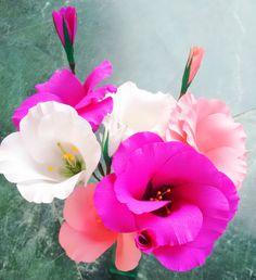 Paper flowers - Eustoma / Lisianthus - Single & Double