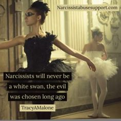 Narcissist Abuse Sup