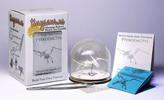 Pterodactyl Tiny Skeleton Model Kit With Glass Display Dome and Assembly Tools