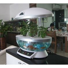 Tabletop Hydroponics Fish Tank Planter Aquaponics System with Grow Light