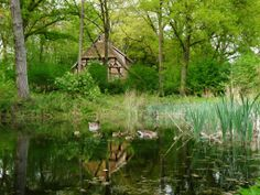 Stunning Nature ~ Appel am See, Lower Saxony, Germany ~ Panoramio 51788950 by Gernot Baur