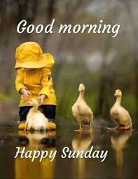 Good Morning Quotes Sunday Funny