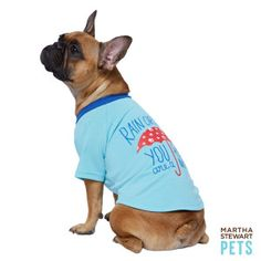 """#MarthaStewartPets """"Rain or Shine You are a Friend of Mine"""" Tee only @petsmartcorp"""