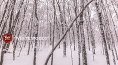 It sure is white in Muskoka. ‪#‎PureMuskoka‬ ‪#‎Muskoka‬